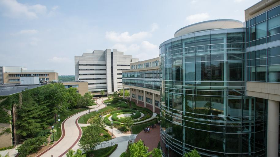 Outside view of Frankel Cardiovascular Center Atrium and grounds